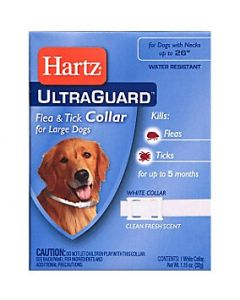 Anti-flea, flea and tick collar for dog and puppies, pet care