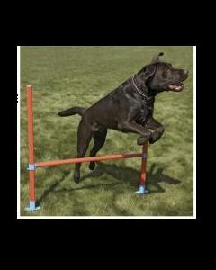 Équipement pour faire sauter les chiens