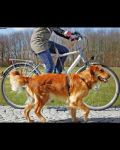 Laisse vélo et jogging pour chiens, Trixie