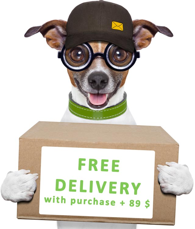 free delivery pets store